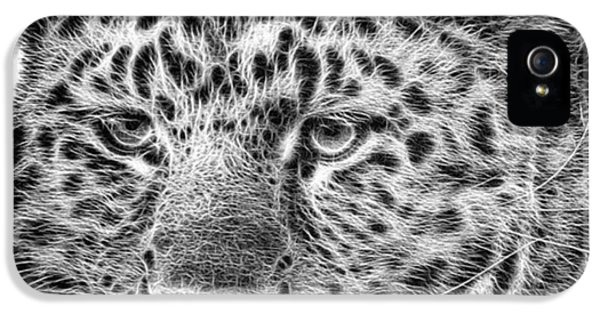 iPhone 5 Case - Amur Leopard by John Edwards