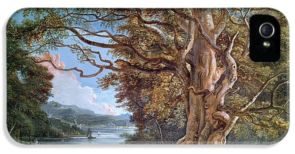 An Ancient Beech Tree IPhone 5 Case by Paul Sandby