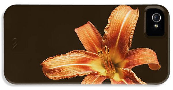 An Orange Lily IPhone 5 Case by Scott Norris