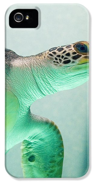 Turtle iPhone 5 Case - Angel 2 by Skip Hunt