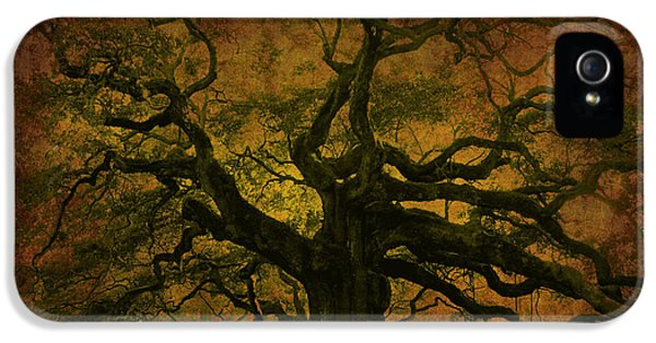 Angel Oak 3 Charleston IPhone 5 Case by Susanne Van Hulst