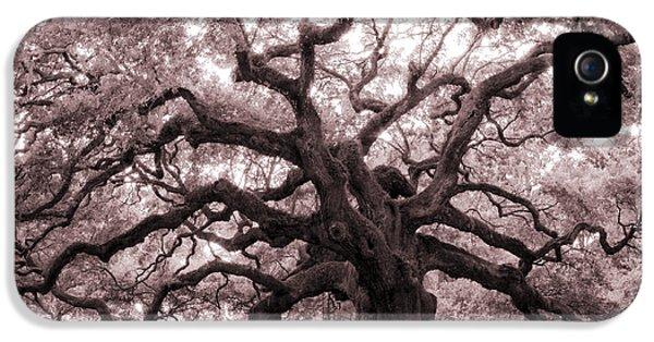 Angel Oak Tree IPhone 5 Case