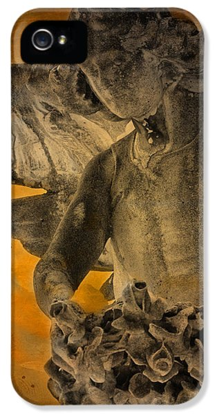 Angel Of Mercy IPhone 5 Case by Larry Marshall