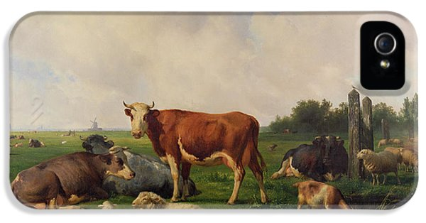Animals Grazing In A Meadow  IPhone 5 Case by Hendrikus van de Sende Baachyssun