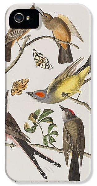 Arkansaw Flycatcher Swallow-tailed Flycatcher Says Flycatcher IPhone 5 Case by John James Audubon
