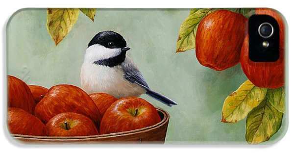 Apple Chickadee Greeting Card 1 IPhone 5 Case by Crista Forest