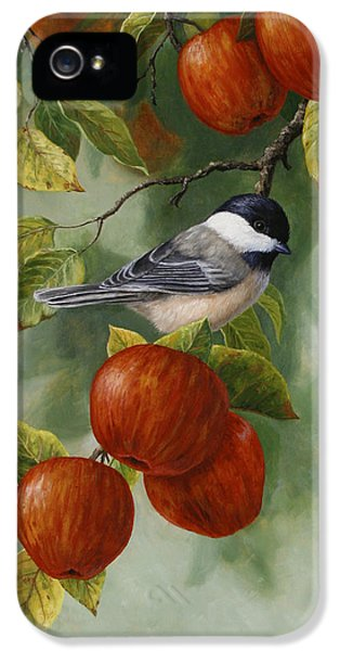 Apple Chickadee Greeting Card 2 IPhone 5 Case by Crista Forest