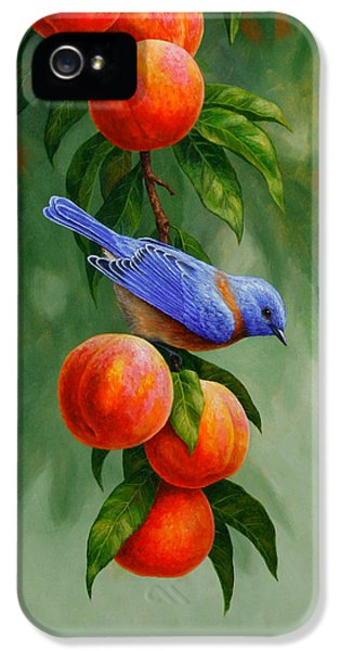 Bluebird iPhone 5 Case - Bird Painting - Bluebirds And Peaches by Crista Forest