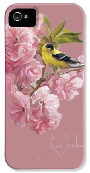Finch iPhone 5 Case - Spring Blossoms by Lucie Bilodeau