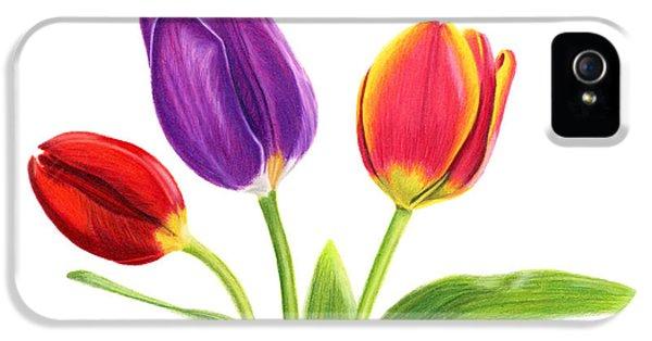 Tulip Trio IPhone 5 Case