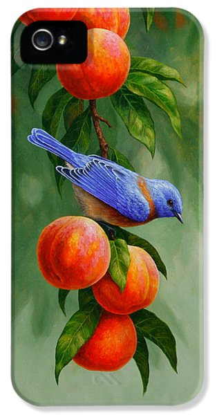 Bluebird And Peaches Greeting Card 1 IPhone 5 Case by Crista Forest