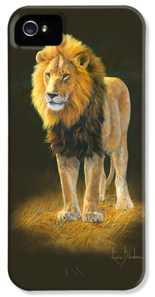 Lion iPhone 5 Case - In His Prime by Lucie Bilodeau
