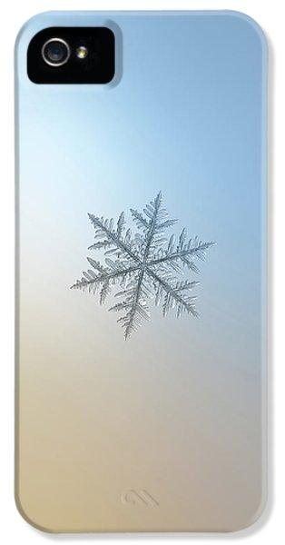 Snowflake Photo - Silverware IPhone 5 Case