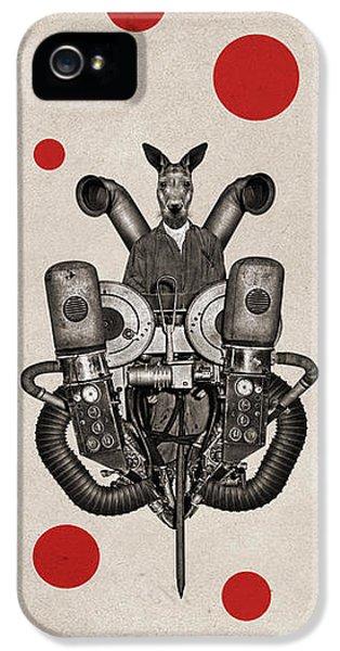Kangaroo iPhone 5 Case - Animal2 by Francois Brumas