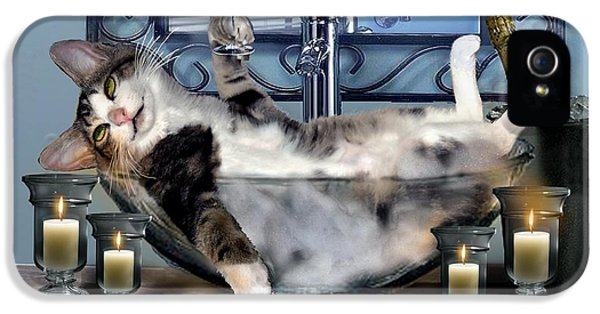 Funny Pet Print With A Tipsy Kitty  IPhone 5 Case by Regina Femrite