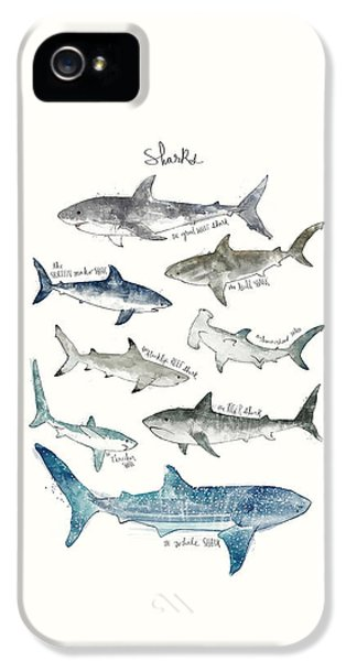 Sharks IPhone 5 Case by Amy Hamilton