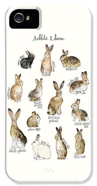 Rabbits And Hares IPhone 5 Case by Amy Hamilton