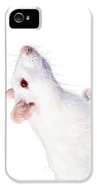 Mice iPhone 5 Case - White Albino Rat Watercolor by Olga Shvartsur