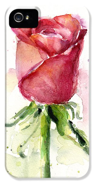 Rose iPhone 5 Case - Rose Watercolor by Olga Shvartsur