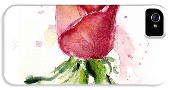 Day iPhone 5 Case - Rose Watercolor by Olga Shvartsur