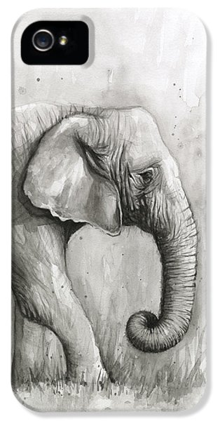 Elephant Watercolor IPhone 5 Case by Olga Shvartsur