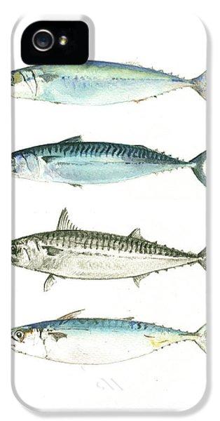 Mackerel Fishes IPhone 5 Case by Juan Bosco