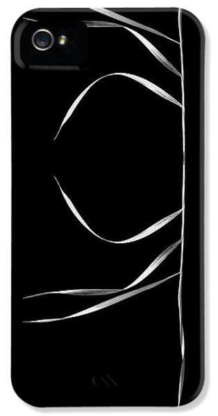 Constituent iPhone 5 Case - Organic Enhancements 3 by Paul Davenport