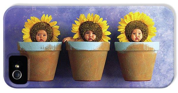 Sunflower iPhone 5 Case - Sunflower Pots by Anne Geddes