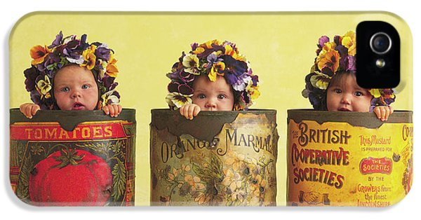 Day iPhone 5 Case - Pansy Tins by Anne Geddes
