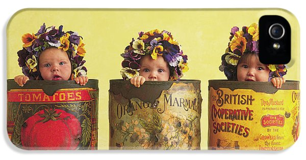 Pansy Tins IPhone 5 Case by Anne Geddes