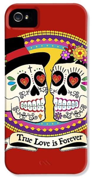 Folk Art iPhone 5 Case - Los Novios Sugar Skulls by Tammy Wetzel