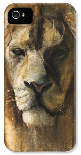 Asiatic Lion IPhone 5 Case by Mark Adlington