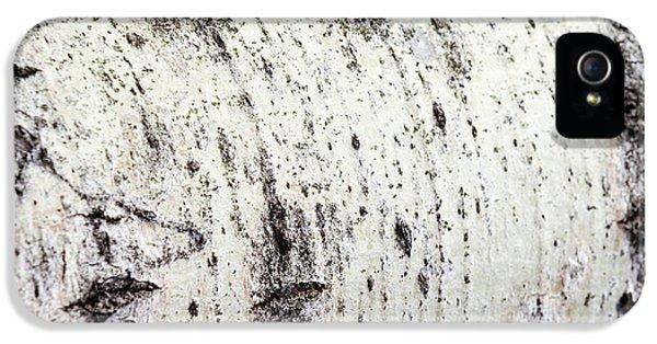 Aspen Tree Bark IPhone 5 Case by Christina Rollo