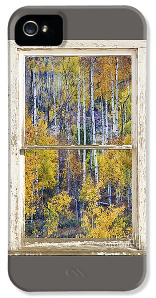 Aspen Tree Magic Cottonwood Pass White Farm House Window Art IPhone 5 Case by James BO  Insogna