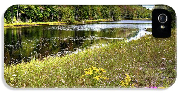 IPhone 5 Case featuring the photograph August Flowers On The Pond by David Patterson