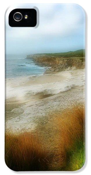 Australia Coastline IPhone 5 Case by Sandy Taylor