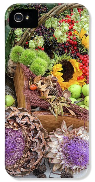 Autumn Abundance IPhone 5 Case by Tim Gainey
