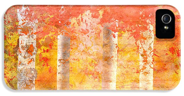 Autumn Aspens IPhone 5 Case by Brett Pfister