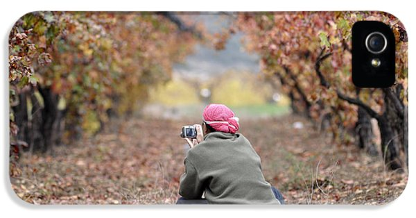 IPhone 5 Case featuring the photograph Autumn At Lachish Vineyards 1 by Dubi Roman