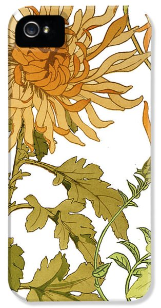 Autumn Chrysanthemums I IPhone 5 Case by Mindy Sommers