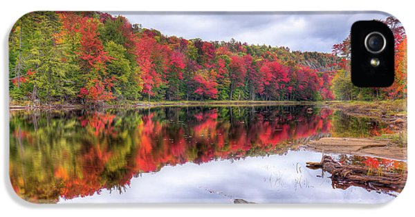 IPhone 5 Case featuring the photograph Autumn Color At The Pond by David Patterson