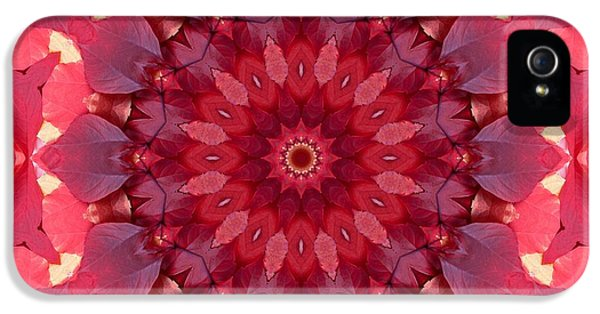 Autumn Gypsy IPhone 5 Case by Mo T