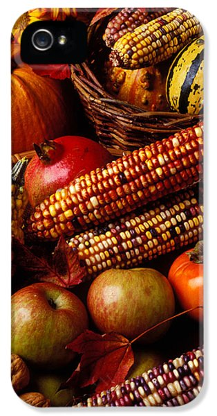 Autumn Harvest  IPhone 5 Case