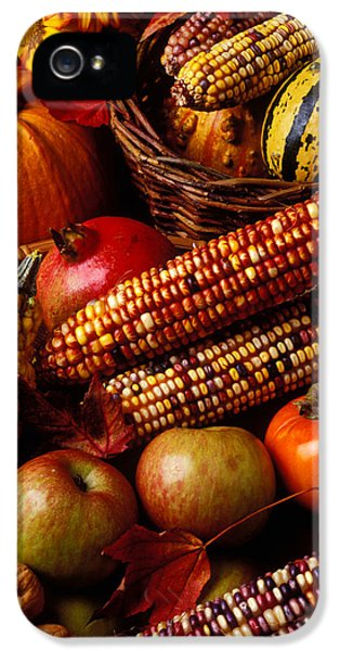 Autumn Harvest  IPhone 5 Case by Garry Gay