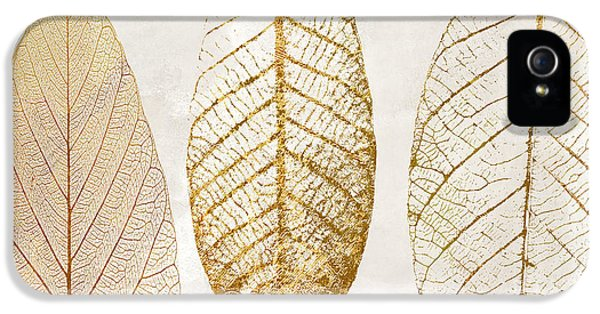 Autumn Leaves IIi Fallen Gold IPhone 5 Case by Mindy Sommers