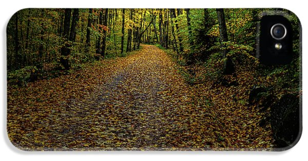 IPhone 5 Case featuring the photograph Autumn Leaves On The Trail by David Patterson