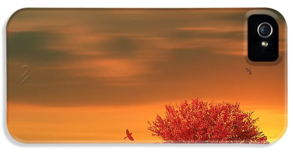 Autumn IPhone 5 Case by Lourry Legarde