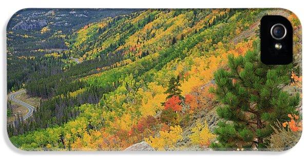 Autumn On Bierstadt Trail IPhone 5 Case