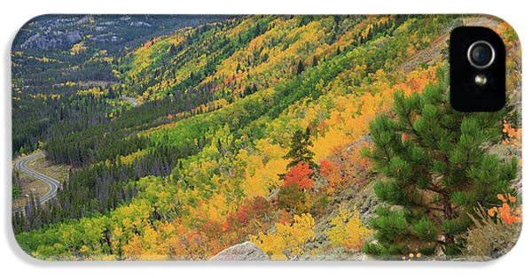 IPhone 5 Case featuring the photograph Autumn On Bierstadt Trail by David Chandler
