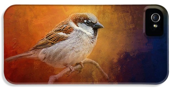 Autumn Sparrow IPhone 5 Case by Jai Johnson